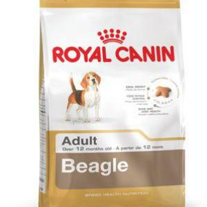 Royal Canin BHN Beagle Adult 3kg 3