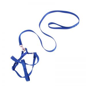 PUPPY HARNESS AND LEASH BLUE 15MM