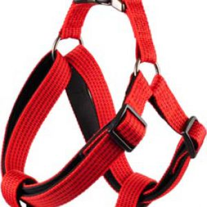 ROVER HARNESS JANNU RED 60/90C 25MM